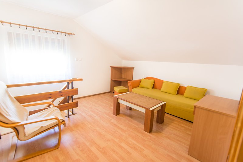 Flooring,Couch,Furniture,Hardwood,Floor