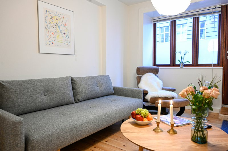 Cozy One-bedroom apartment on the ground floor in Copenhagen Osterbro, holiday rental in Gladsaxe Municipality