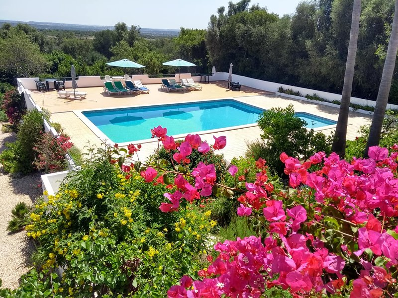 Villa Feliz - 1 bedroom apartment, holiday rental in Sao Bartolomeu de Messines