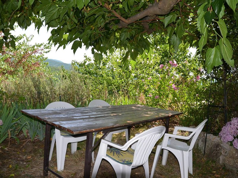 Apartment with mountain view, holiday rental in Valleraugue