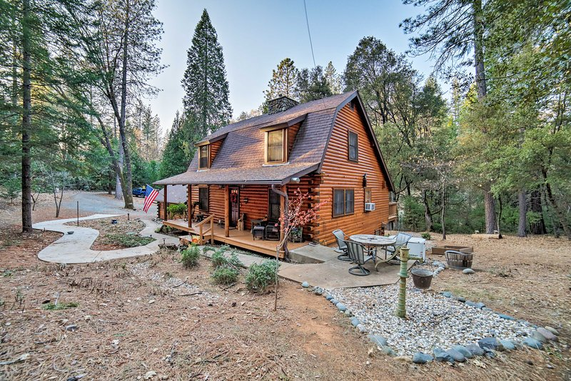 NEW! Secluded Log Cabin Studio Apt in Grass Valley, vacation rental in Penn Valley