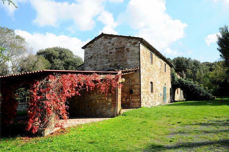 Nice,comfortable,typical Tuscan lodging in a lovely farmhouse,D3,air conditioned, vacation rental in Malandrone