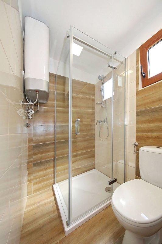 Indoors,Room,Bathroom,Toilet,Shower Faucet