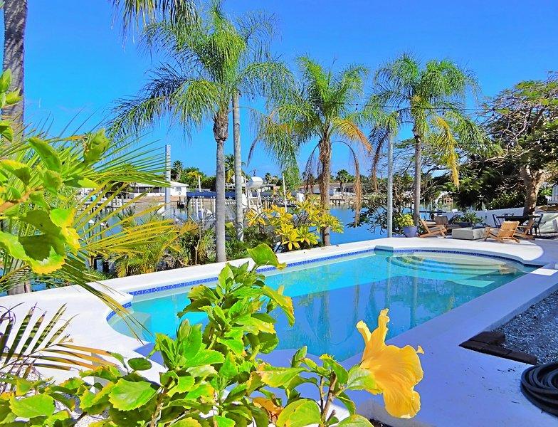Resort, hotel, costruzione, tropicale, Piscina