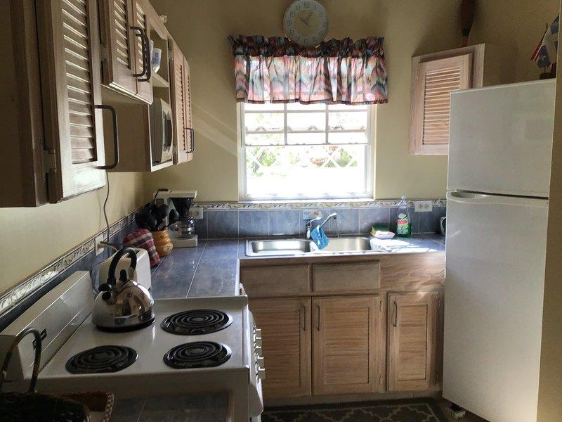 Kitchen with basic needs.
