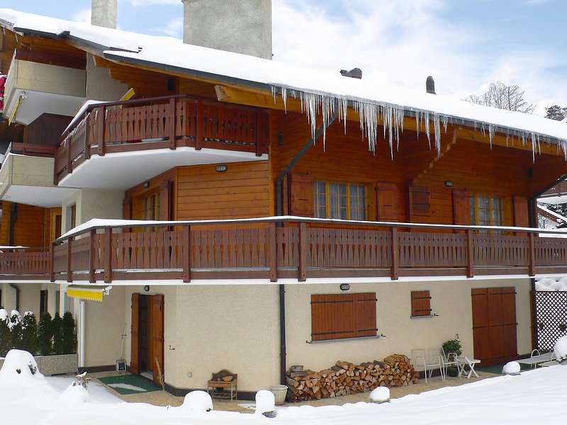 Le Miclivier B2, holiday rental in Bex