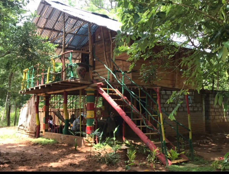 Treehouse Jungle Retreat and Camping, holiday rental in Kekirawa
