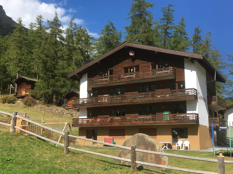 Apartments Carmena, holiday rental in Saas-Grund
