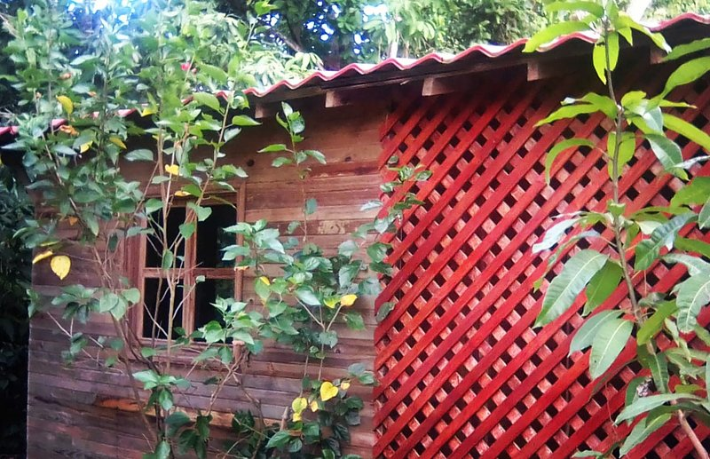 Jungle Hideout with Large Outdoor Entertainment Area, alquiler vacacional en San Isidro