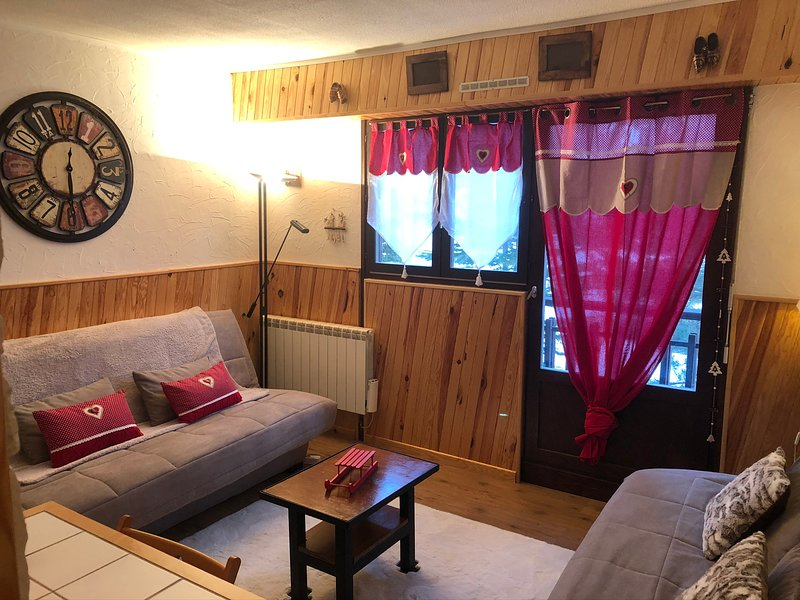 Studio - 600 m from the slopes, vacation rental in Saint-Etienne-de-Tinee