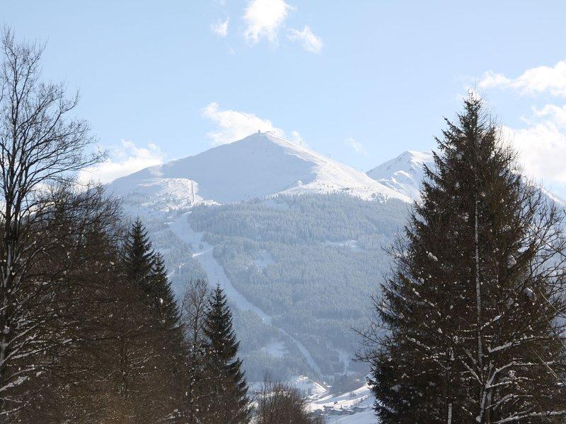 Alexander, holiday rental in Huttschlag