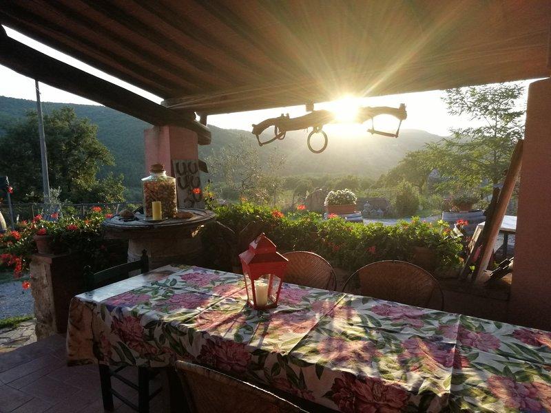 Tegline Chianti Tuscan accomodation with pond, holiday rental in Radda in Chianti