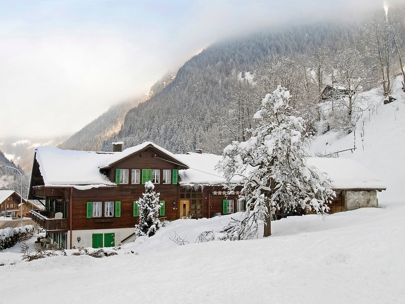 Chalet Schwendihus, holiday rental in Grindelwald