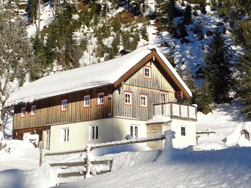 Plaik-Häusl, holiday rental in Abtenau