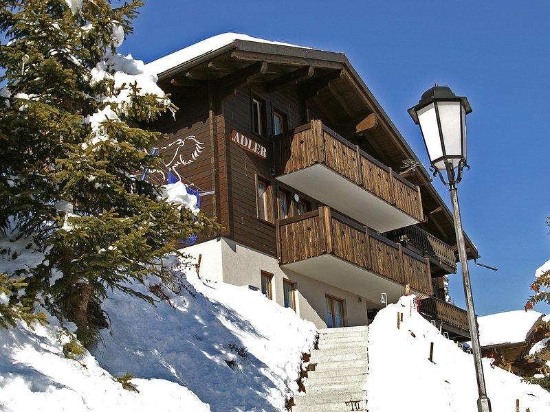 Wohnung 1, vacation rental in Fieschertal