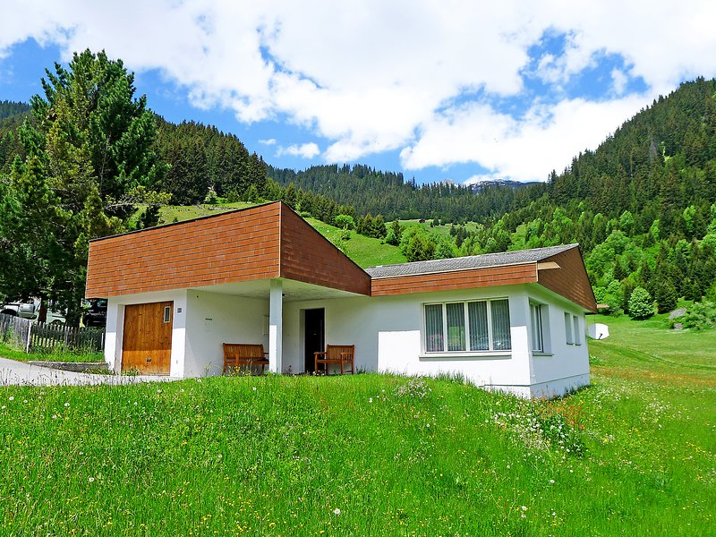 Peisel, holiday rental in Segnas