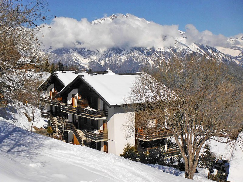 Les Arolles 704, holiday rental in Riddes