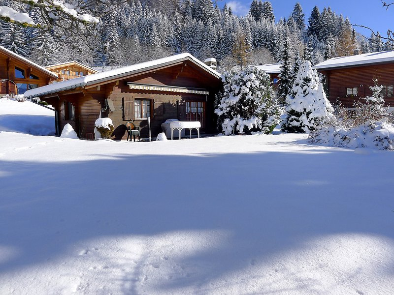 Chalet Lorila, holiday rental in Bex