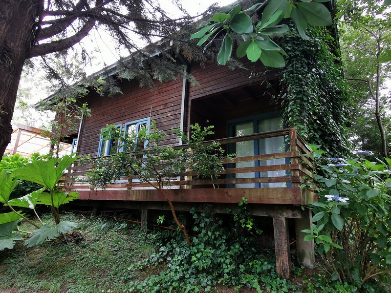 Cabaa Pudomo en Coaripe, vacation rental in Panguipulli