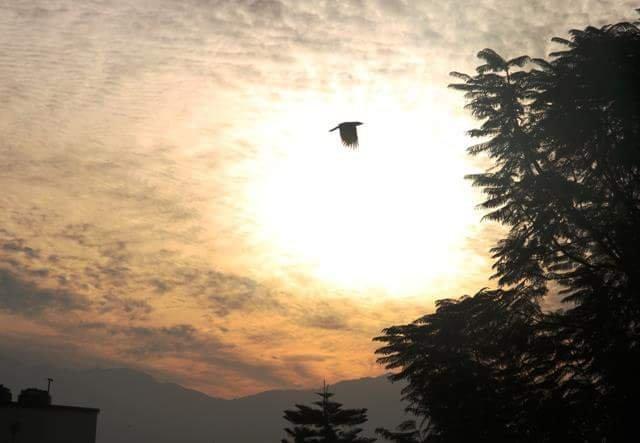 Dream Home – semesterbostad i Nuwakot
