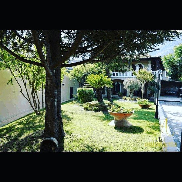 Villa Antonietta Forio, vacation rental in Forio