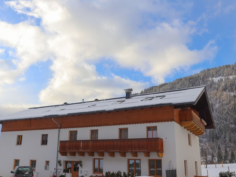 Edelweiss, holiday rental in Pfarrwerfen