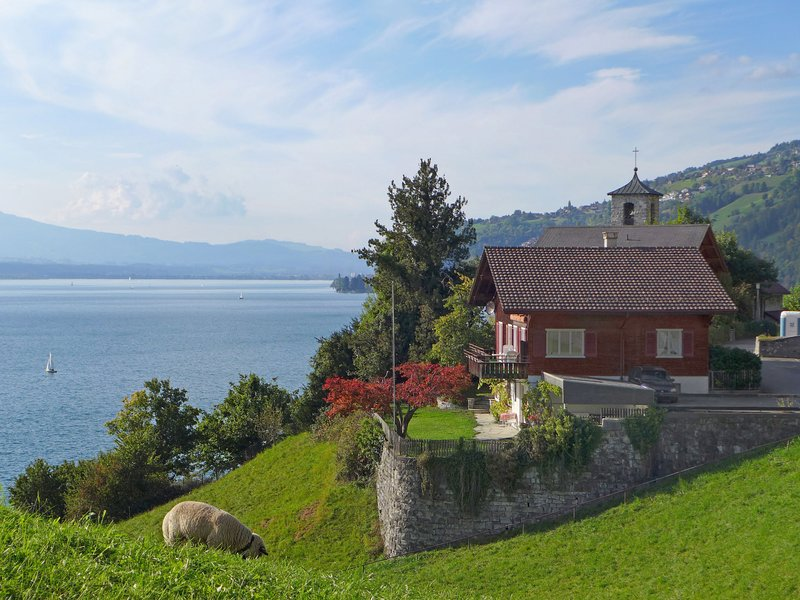 Chalet Christina, vacation rental in Spiez