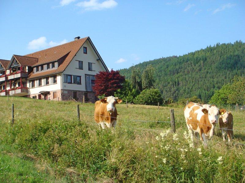 Freyenhöfe, holiday rental in Baiersbronn
