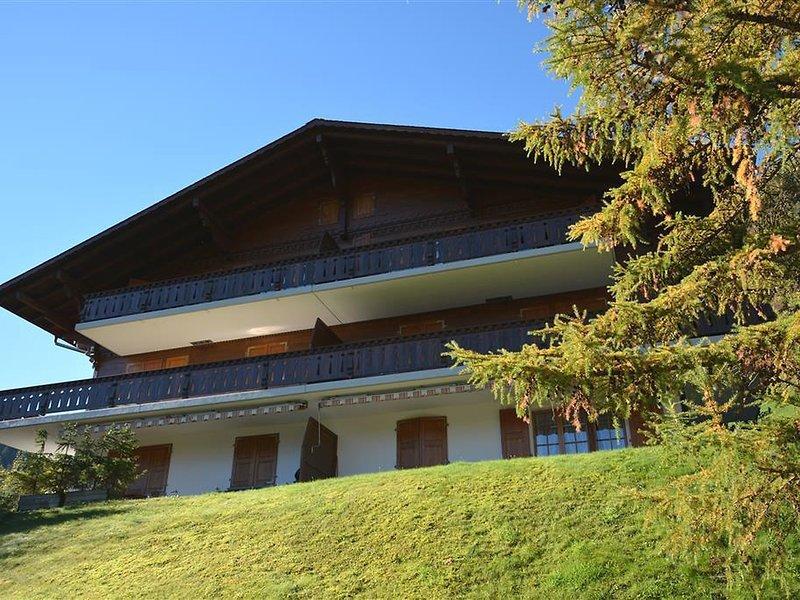 Hornflue (Baumann), vacation rental in Chateau-d'Oex