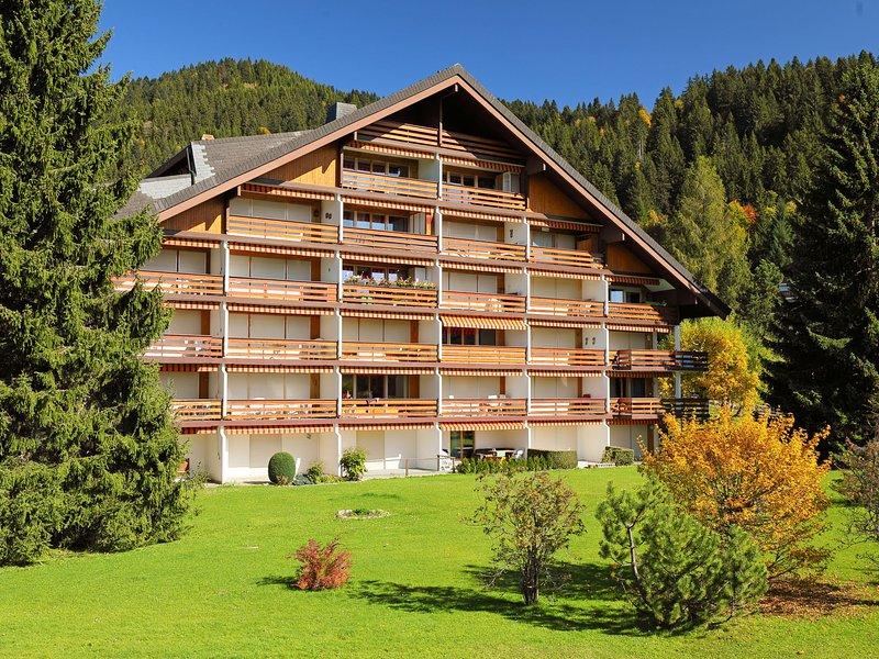 Diamant, location de vacances à Alpe des Chaux