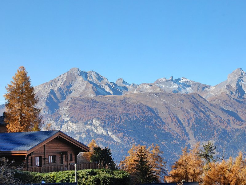 La Bergerie, holiday rental in Riddes
