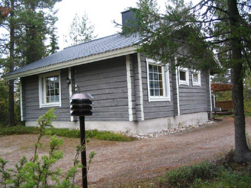 Pelkkaveska, holiday rental in Meskusvaara