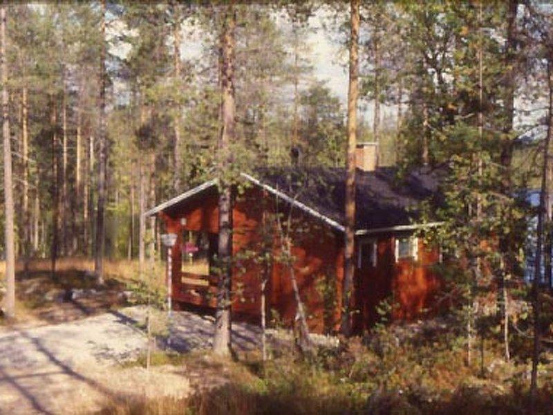 Viipusjärvi 12, holiday rental in Vallioniemi