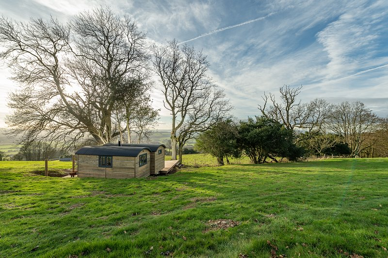 Herdwick Shepherd Hut free Hot Tub - Quantock Hills ANOB, location de vacances à Nether Stowey