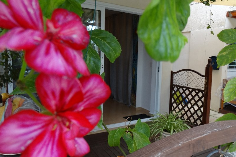 Heart for Art Studio Apartment, holiday rental in Chloraka