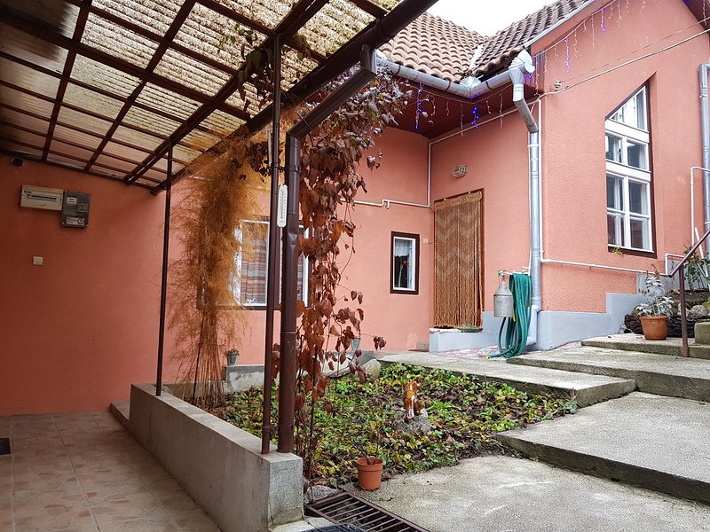 Dalia villa the whole property near the medieval center of Sighisoara, holiday rental in Cloasterf