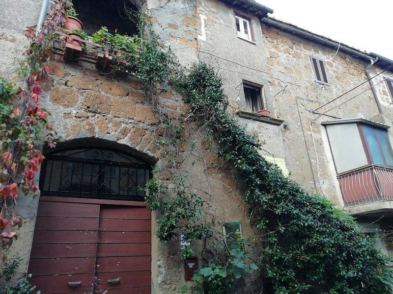 Nice house with terrace, vakantiewoning in Cura di Vetralla