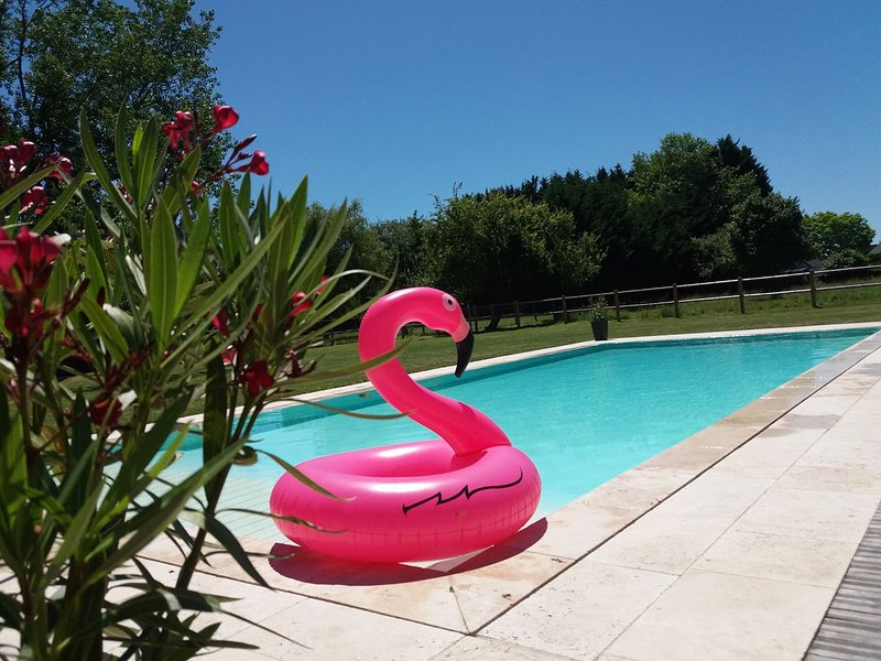 Amazing house with shared pool, alquiler vacacional en Savonnieres