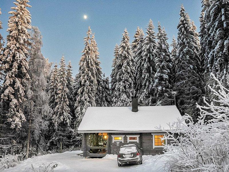 Mustikka, holiday rental in Luopioinen