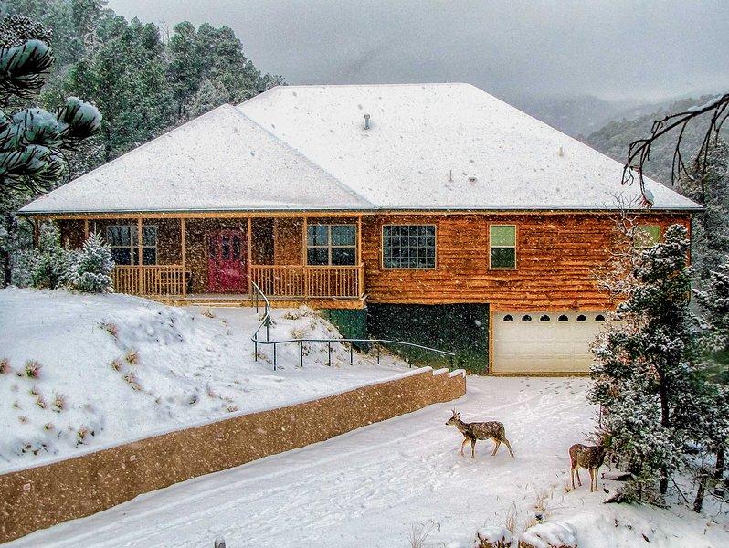 NEW! Cozy Cabin By Downtown - 19 Mi to Ski Apache!, location de vacances à Ruidoso