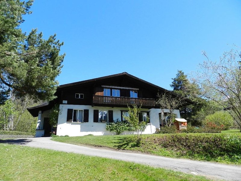 Gstaad accommodation chalets for rent in Gstaad apartments to rent in Gstaad holiday homes to rent in Gstaad
