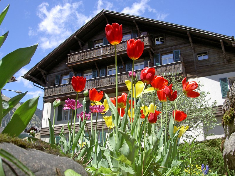Sternen B, vacation rental in Lenk im Simmental