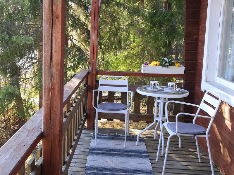 Hellinki, holiday rental in Ruovesi