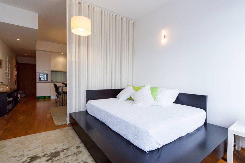T0 - Visto Rio (Barco Gil Eanes) - Centro cidade, holiday rental in Carreco