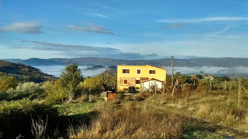 wild life, smart stay: podere gaipa, holiday rental in Sala