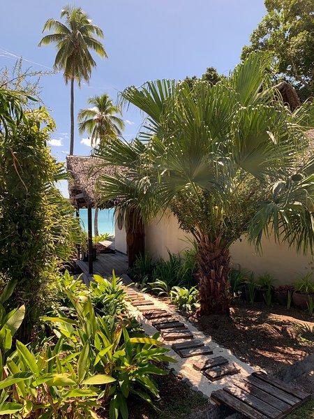 Entrada de palmeras