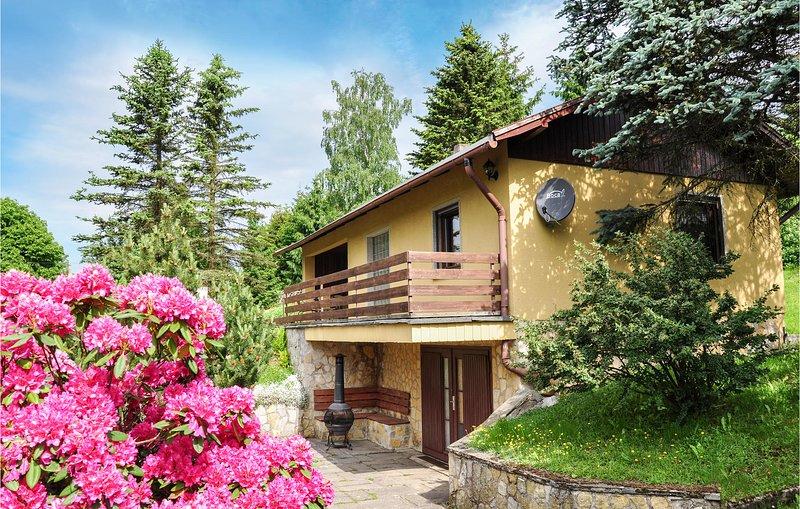 Nice home in Goldlauter-Heidersbach with Sauna, WiFi and 2 Bedrooms (DTH932), holiday rental in Suhl