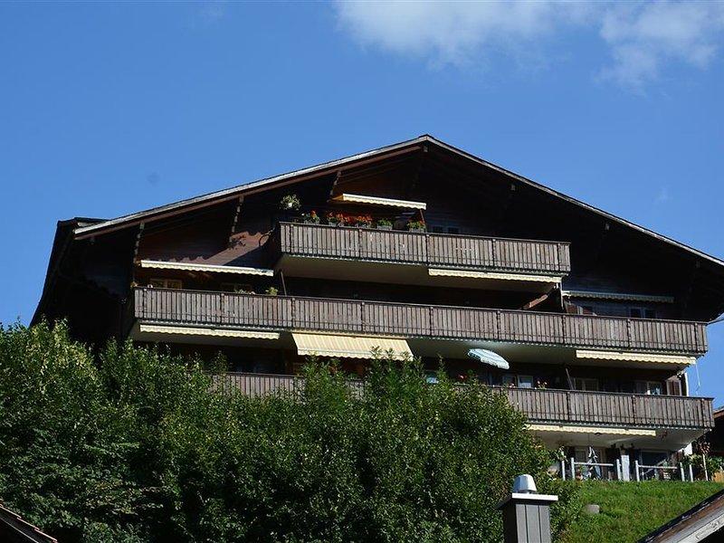 Hübeli (Arm), holiday rental in Zweisimmen