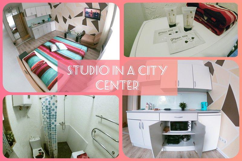 City Center Studio Kaunas, casa vacanza a Contea di Kaunas