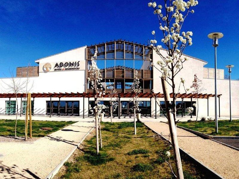Adonis Aix en Provence, holiday rental in Ventabren